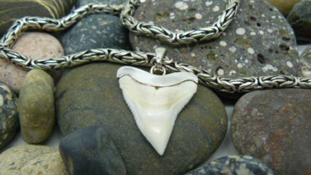 Зуб акулы — значение амулета