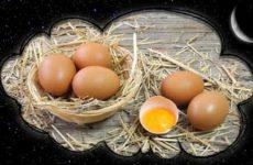 Видеть во сне куриные яйца