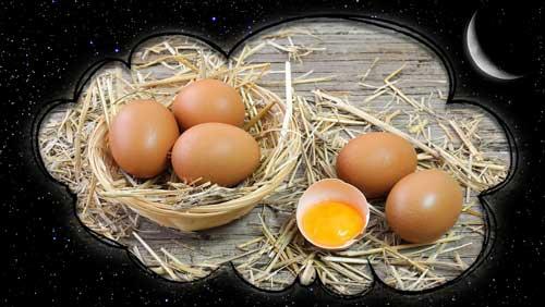 К чему снятся яйца куриные во сне: женщине, мужчине, много ...