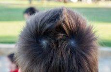 Что значат две макушки на голове